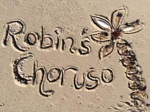 Startseite_klein_Logo Sand_ Robins Choruso_c Katrin Hennig - Kopie